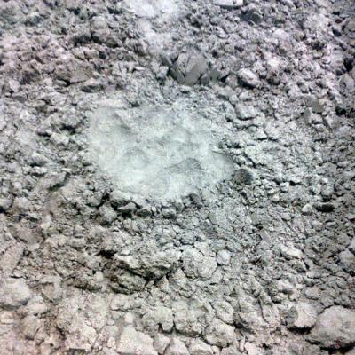 Atomized Powder